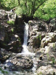 Tishcher Creek Falls