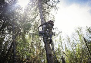 My Love Hate Relationship With Tree Stands Northern