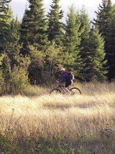 Beautiful day, spectacular ride. |ERIN ALTEMUS