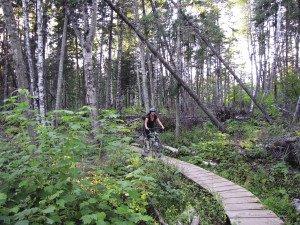 Not all trails are dirt. Boardwalks and bridges keep it interesting. |MATTHEW SCHMIDT