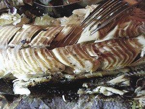 Smoked campfire fish. | KATHY TOIVONEN