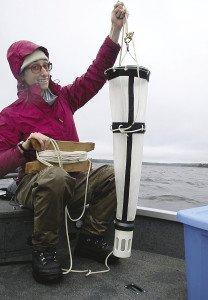 Amanda Weberg checks for invasive species on Devil Track Lake near Grand Marais. | SUBMITTED