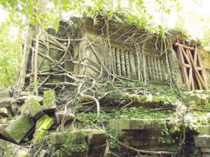 Trees and thick brush grow over the wall and windows of Beng Mealea. | MICAELLA PENNING