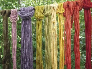 Skeins of wool dyed with St. John's Wort, madder, purple corn husk and other plants gathered from the  Great Lakes region.| JULIA PRINSELAAR