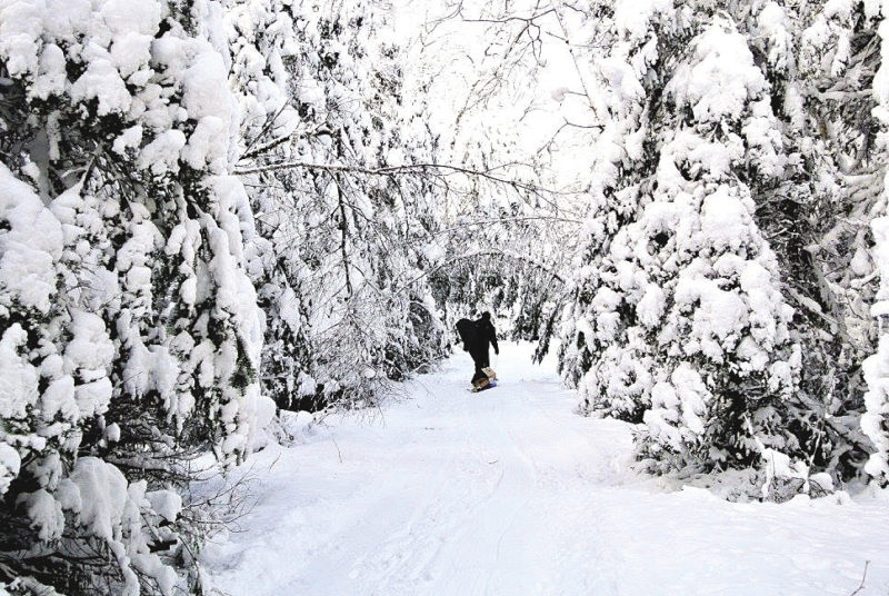 Walking the North Shore during the winter