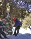 North Shore ice climbing
