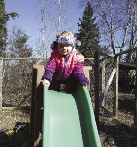"While Dad hooks up a team, Sylvia finds the slide in her ""play kennel"" to be more fun. 