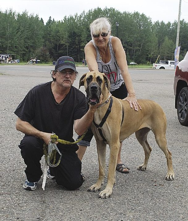 Margaret Foster-Hyde met up with trucker Garnett from Sky Freightways Ltd. and dog Amore at Kakabeka Falls Hotel. Margaret started the volunteer non-profit group in 2013 to provide free transport by truckers to move dogs (and now cats, too) to their new homes.