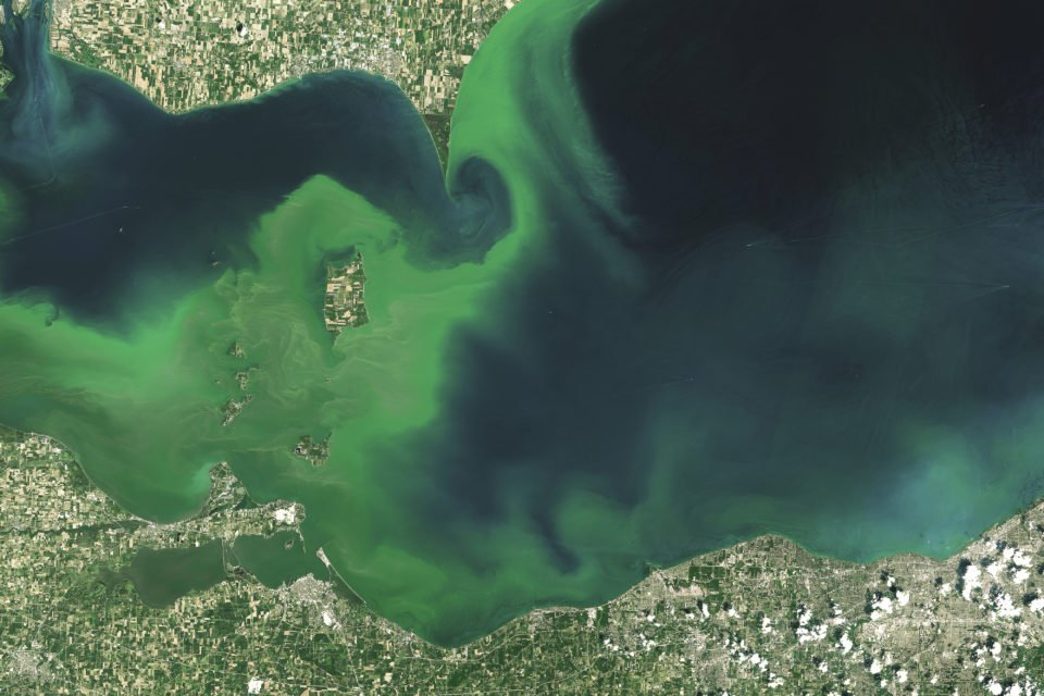 Algae blooms on Lake Erie (pictured) are already common due to warmer water temperatures and higher levels of nutrients. Lake Superior—known for its clear, cold water—only began experiencing algae blooms in the past several years.
