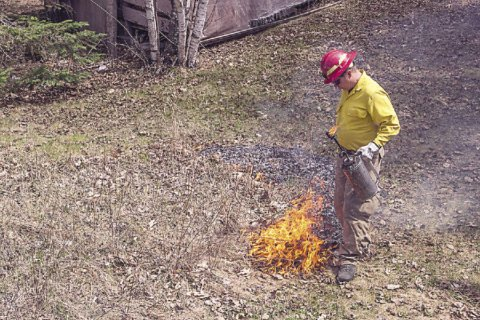 Jeff decided it was time to renew our garden by burning it.