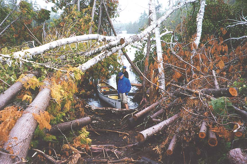 Paddlers found quite the obstacle course when they tried to exit the Boundary Waters after the blowdown. | USDA FOREST SERVICE— SUPERIOR NATIONAL FOREST